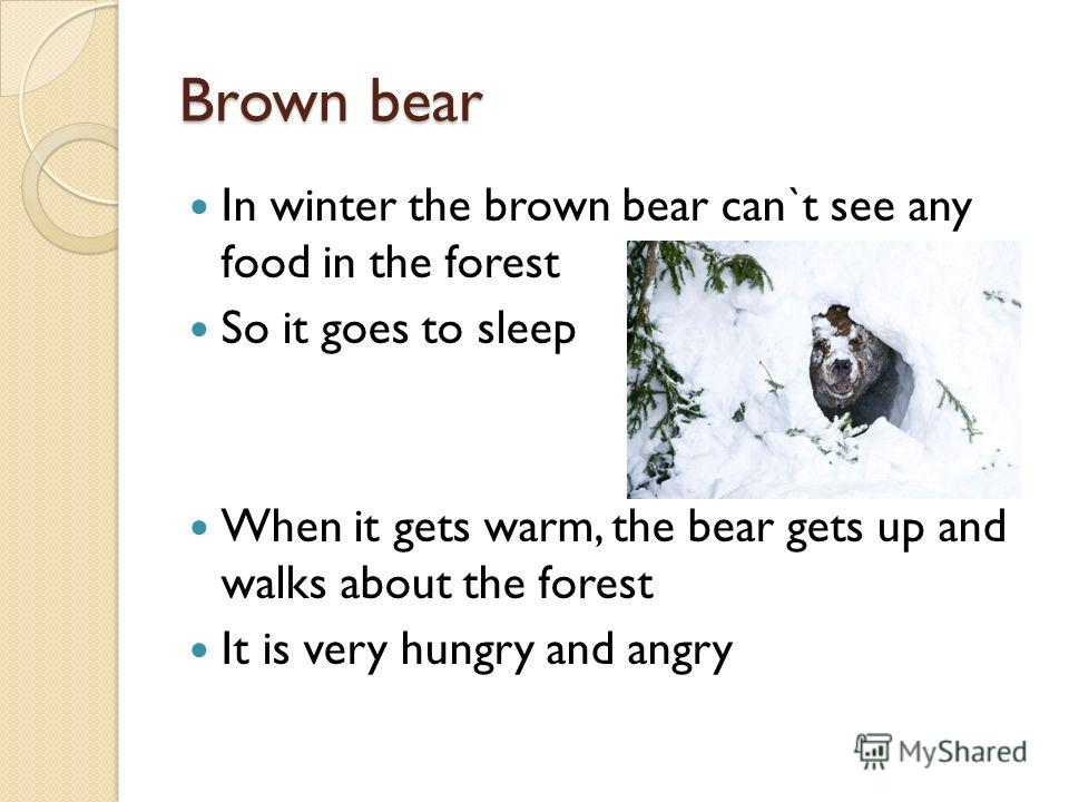 Brown bear In winter the brown bear can`t see any food in the forest So it goes to sleep When it gets warm, the bear gets up and walks about the forest It is very hungry and angry