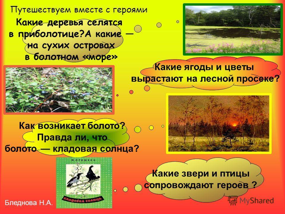 Какие деревья селятся в приболотице?А какие на сухих островах в болотном «море» Путешествуем вместе с героями Какие ягоды и цветы вырастают на лесной просеке? Как возникает болото? Правда ли, что болото кладовая солнца? Какие звери и птицы сопровожда