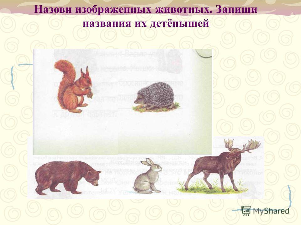 Назови изображенных животных. Запиши названия их детёнышей