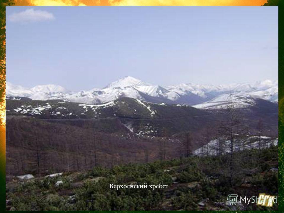 Хребет Черского расположен на Северо- Востоке Сибири, Верхоянский хребет