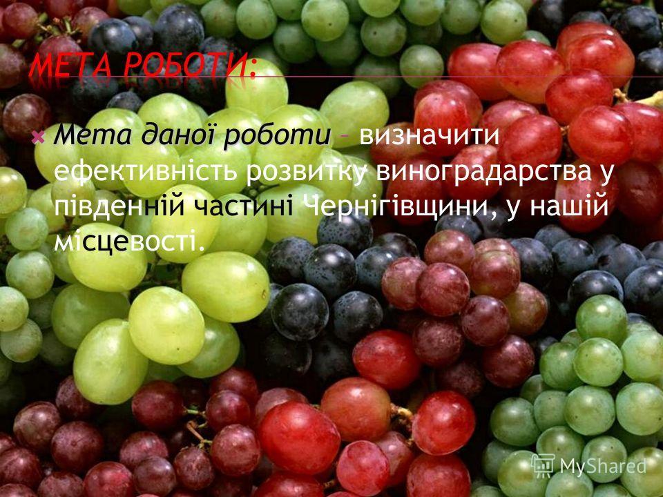 Мета даної роботи Мета даної роботи – визначити ефективність розвитку виноградарства у південній частині Чернігівщини, у нашій місцевості.