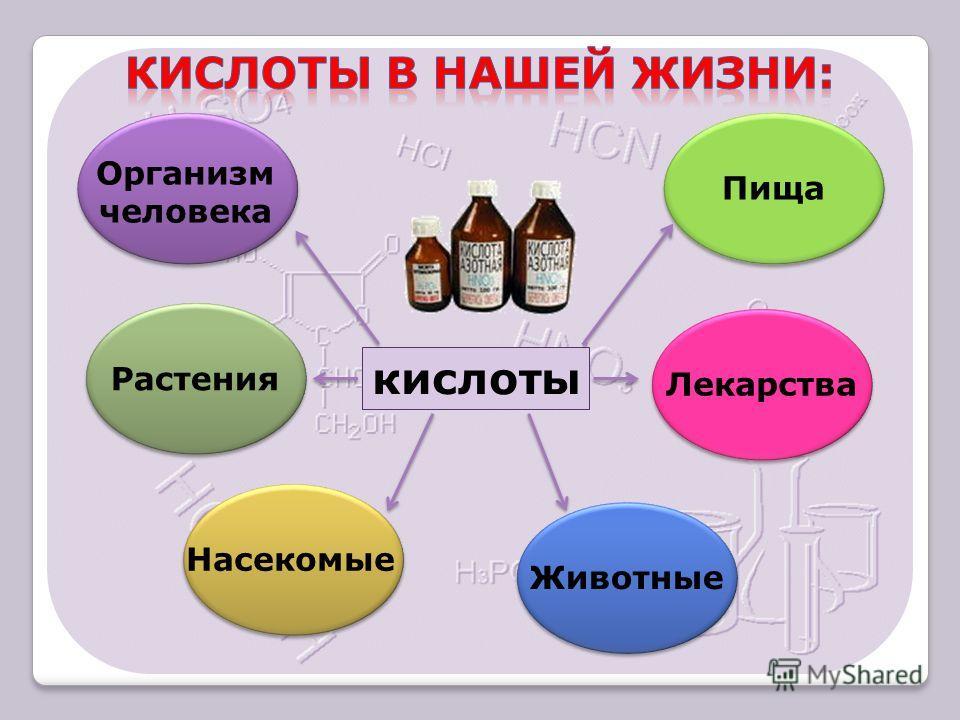 кислоты Организм человека Растения Насекомые Животные Лекарства Пища