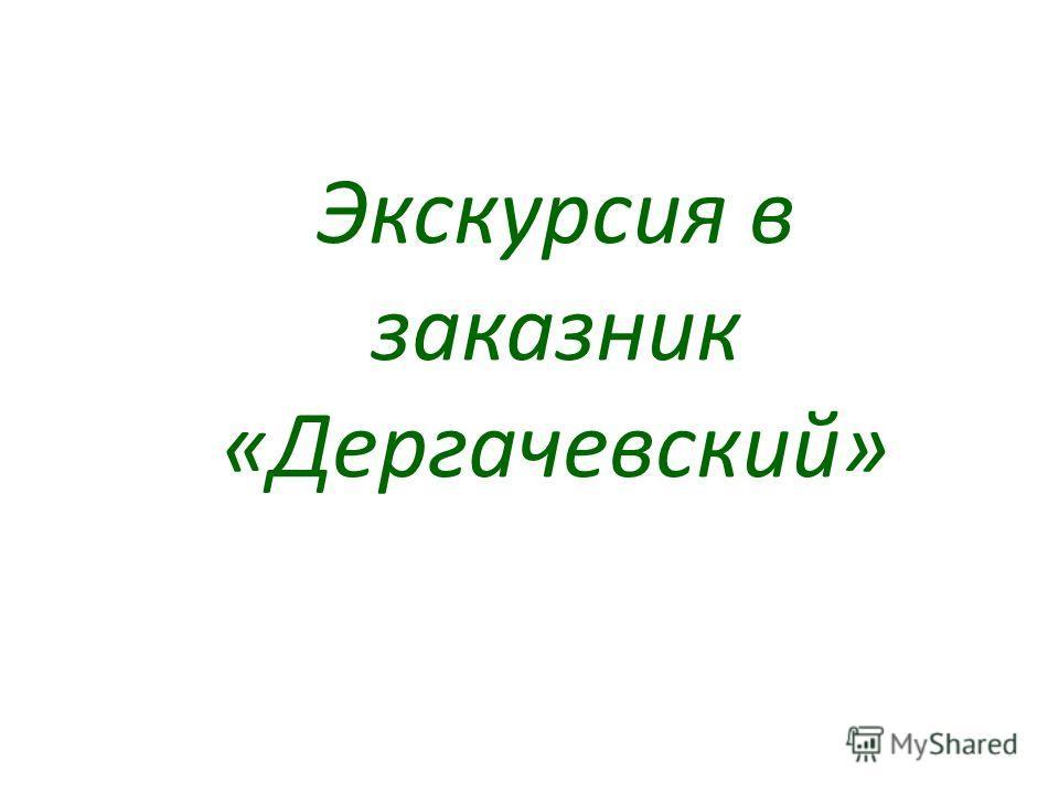 Экскурсия в заказник «Дергачевский»