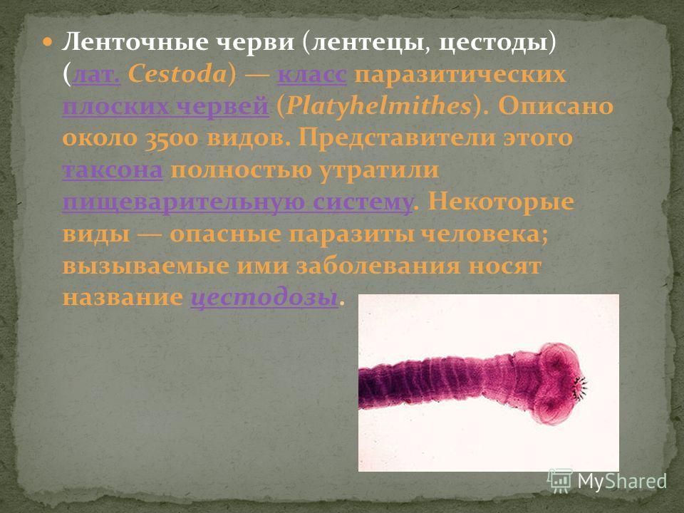 Ленточные черви (лентецы, цестоды) (лат. Cestoda) класс паразитических плоских червей (Platyhelmithes). Описано около 3500 видов. Представители этого таксона полностью утратили пищеварительную систему. Некоторые виды опасные паразиты человека; вызыва