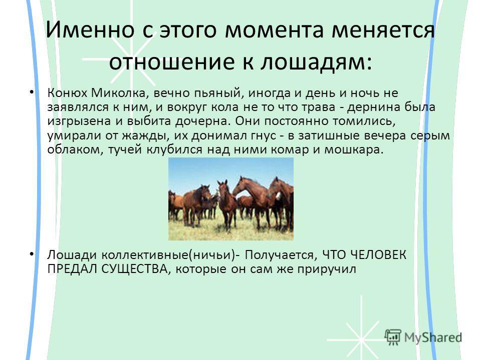 Именно с этого момента меняется отношение к лошадям: Конюх Миколка, вечно пьяный, иногда и день и ночь не заявлялся к ним, и вокруг кола не то что трава - дернина была изгрызена и выбита дочерна. Они постоянно томились, умирали от жажды, их донимал г