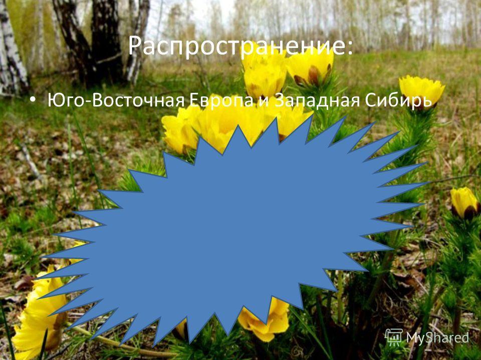 Распространение: Юго-Восточная Европа и Западная Сибирь