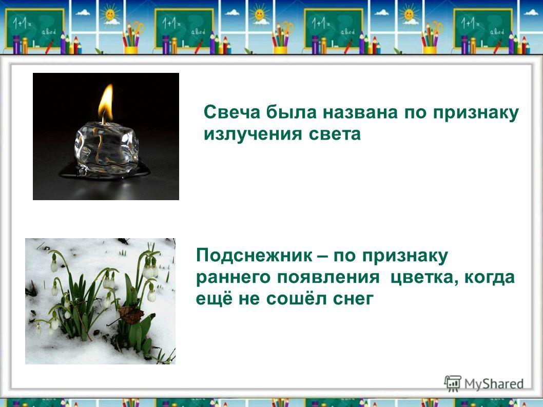 Свеча была названа по признаку излучения света Подснежник – по признаку раннего появления цветка, когда ещё не сошёл снег