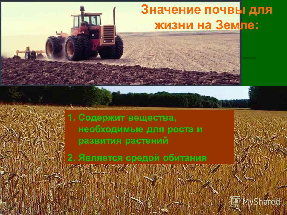 Значение почвы для жизни на Земле: 1.Содержит вещества, необходимые для роста и развития растений 2.Является средой обитания