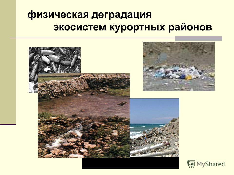 физическая деградация экосистем курортных районов