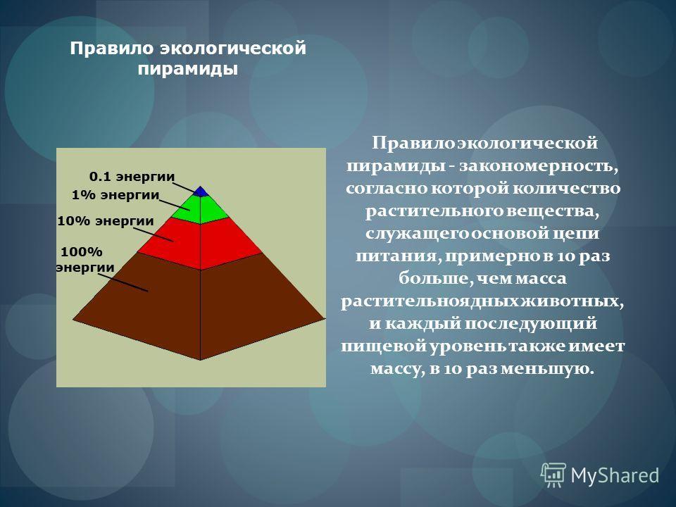 Правило экологической пирамиды Правило экологической пирамиды - закономерность, согласно которой количество растительного вещества, служащего основой цепи питания, примерно в 10 раз больше, чем масса растительноядных животных, и каждый последующий пи