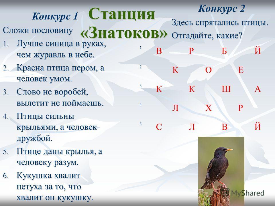 Станция «Знатоков» Конкурс 2 Здесь спрятались птицы. Отгадайте, какие? 1 В Р Б Й 2 К О Е 3 К К Ш А 4 Л Х Р 5 С Л В Й Конкурс 1 Сложи пословицу 1. Лучше синица в руках, чем журавль в небе. 2. Красна птица пером, а человек умом. 3. Слово не воробей, вы