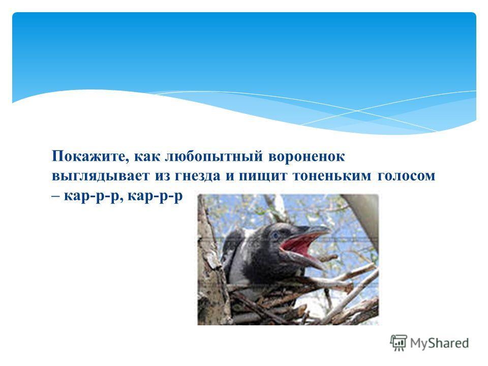 Покажите, как любопытный вороненок выглядывает из гнезда и пищит тоненьким голосом – кар-р-р, кар-р-р