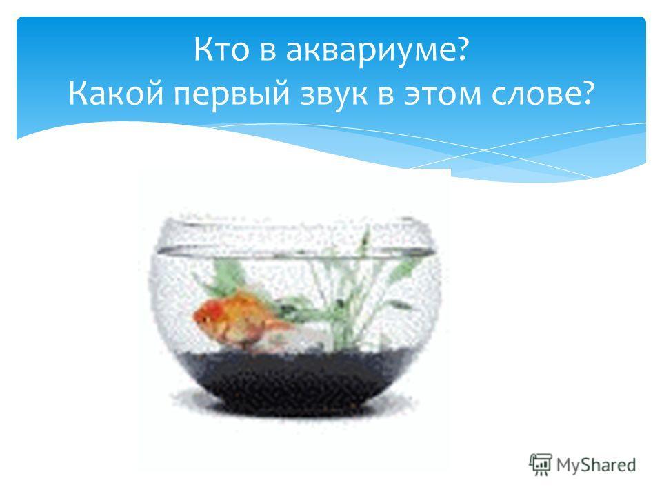 Кто в аквариуме? Какой первый звук в этом слове?