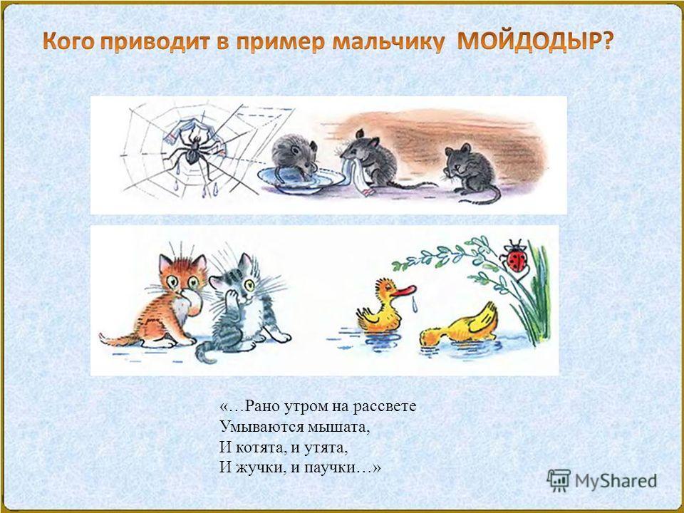 «…Рано утром на рассвете Умываются мышата, И котята, и утята, И жучки, и паучки…»