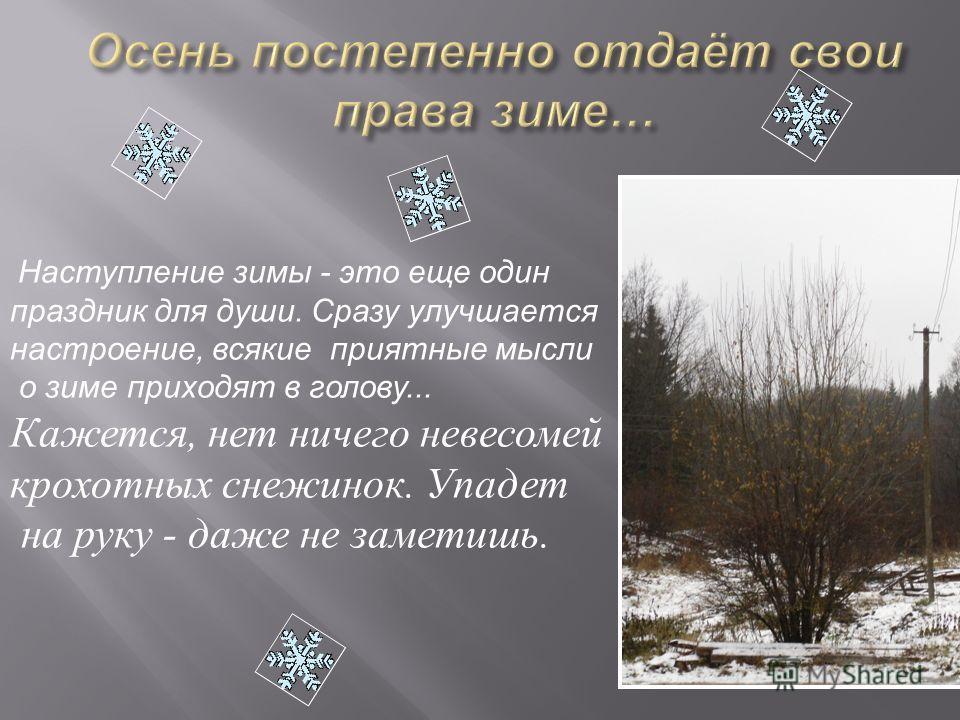 Наступление зимы - это еще один праздник для души. Сразу улучшается настроение, всякие приятные мысли о зиме приходят в голову... Кажется, нет ничего невесомей крохотных снежинок. Упадет на руку - даже не заметишь.