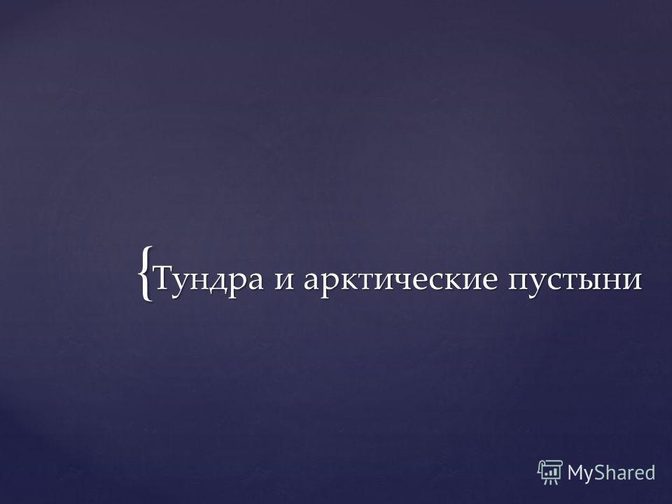 { Тундра и арктические пустыни Тундра и арктические пустыни
