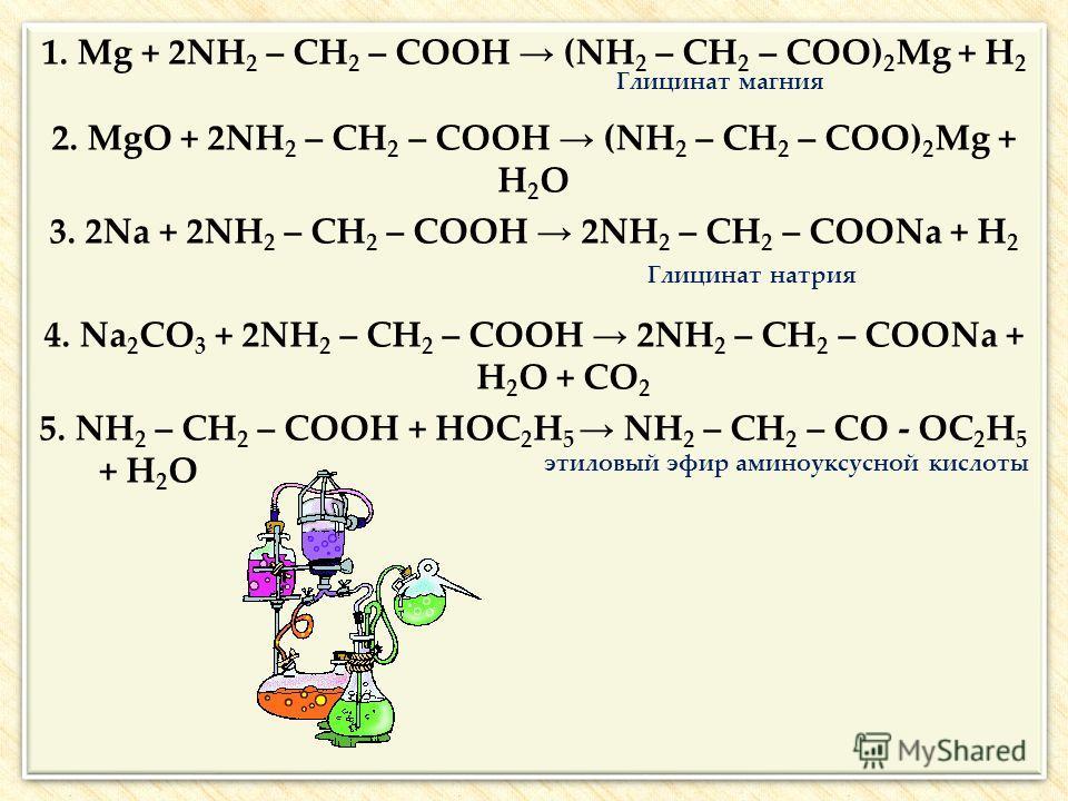 1. Mg + 2NH 2 – CH 2 – COOH (NH 2 – CH 2 – COO) 2 Mg + H 2 Глицинат магния 2. MgO + 2NH 2 – CH 2 – COOH (NH 2 – CH 2 – COO) 2 Mg + H 2 O 3. 2Na + 2NH 2 – CH 2 – COOH 2NH 2 – CH 2 – COONa + H 2 Глицинат натрия 4. Na 2 CO 3 + 2NH 2 – CH 2 – COOH 2NH 2