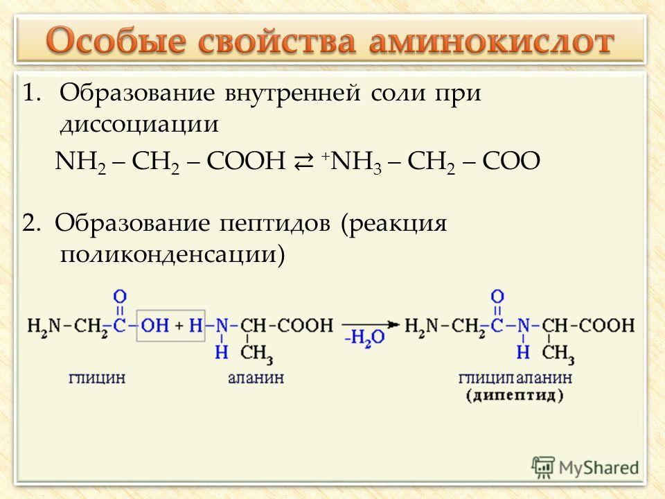 1.Образование внутренней соли при диссоциации NH 2 – CH 2 – COOH + NH 3 – CH 2 – COO 2. Образование пептидов (реакция поликонденсации) 1.Образование внутренней соли при диссоциации NH 2 – CH 2 – COOH + NH 3 – CH 2 – COO 2. Образование пептидов (реакц