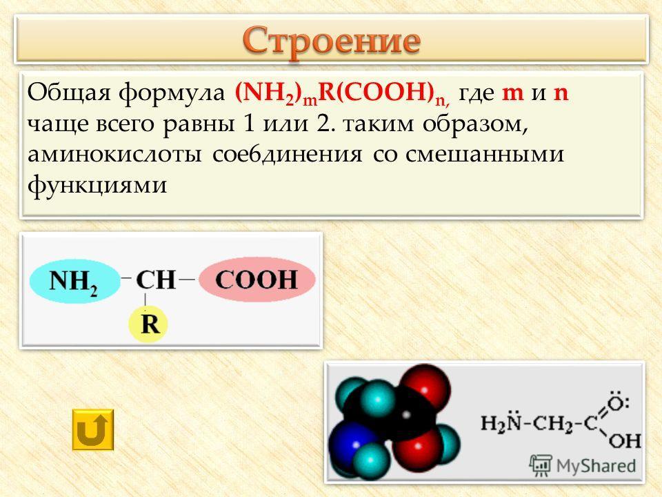 Общая формула (NH 2 ) m R(COOH) n, где m и n чаще всего равны 1 или 2. таким образом, аминокислоты сое6динения со смешанными функциями