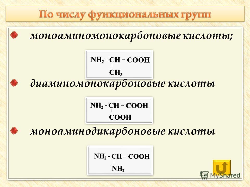 моноаминомонокарбоновые кислоты; диаминомонокарбоновые кислоты моноаминодикарбоновые кислоты моноаминомонокарбоновые кислоты; диаминомонокарбоновые кислоты моноаминодикарбоновые кислоты