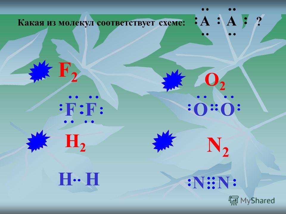 Какая из молекул соответствует схеме: A A ? N2N2 O2O2 H2H2 F2F2 OO N N HH FF