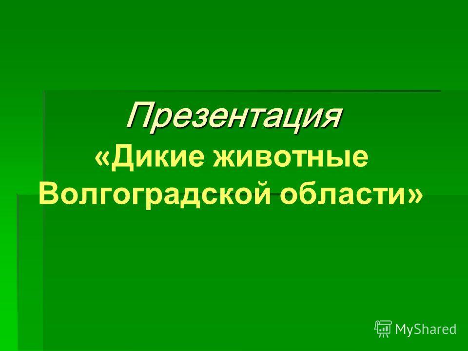 Презентация « Дикие ж ивотные Волгоградской о бласти »