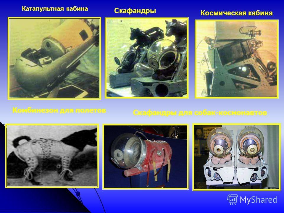 Космическая кабина Катапультная кабина Скафандры Комбинезон для полетов Скафандры для собак-космонавтов