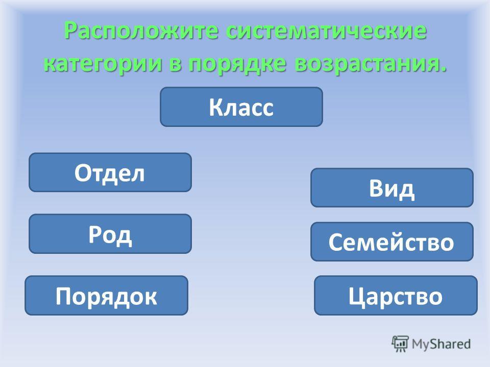 Расположите систематические категории в порядке возрастания. Класс Царство Отдел Род Семейство Вид Порядок