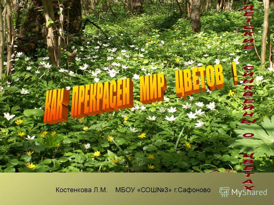 Костенкова Л.М. МБОУ «СОШ3» г.Сафоново