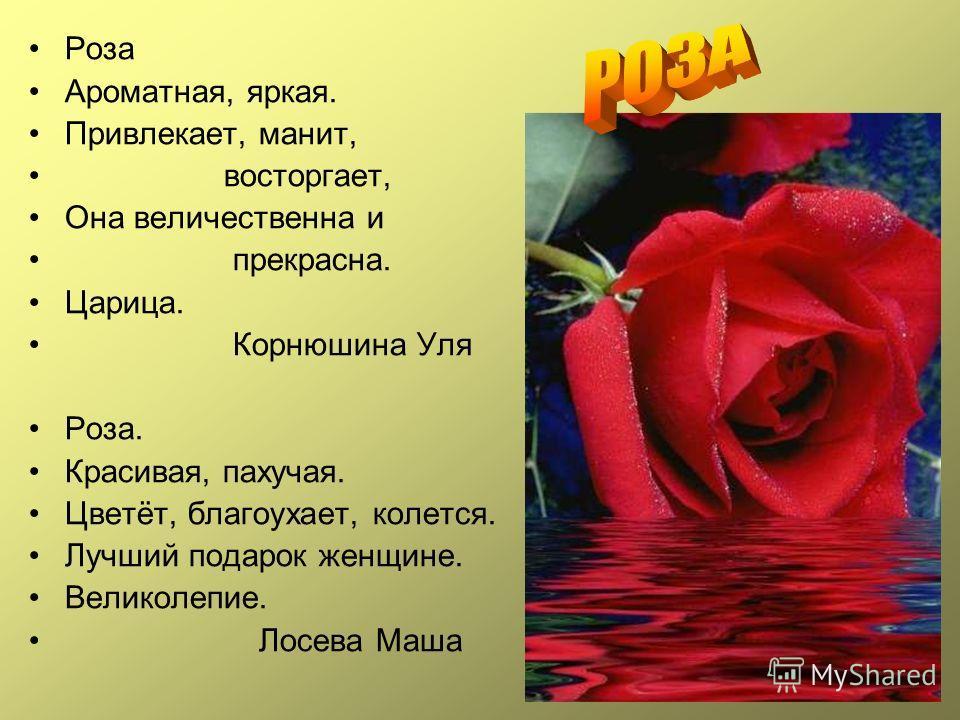 Роза Ароматная, яркая. Привлекает, манит, восторгает, Она величественна и прекрасна. Царица. Корнюшина Уля Роза. Красивая, пахучая. Цветёт, благоухает, колется. Лучший подарок женщине. Великолепие. Лосева Маша