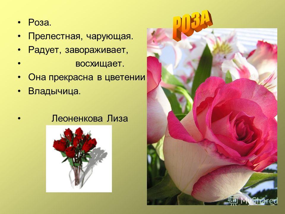 Роза. Прелестная, чарующая. Радует, завораживает, восхищает. Она прекрасна в цветении Владычица. Леоненкова Лиза