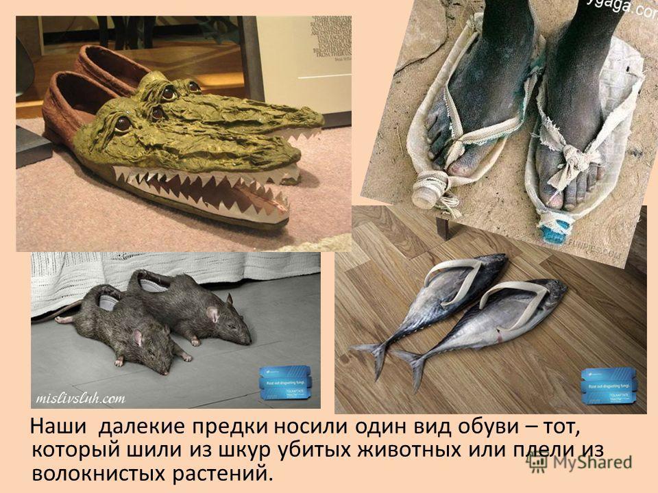 Наши далекие предки носили один вид обуви – тот, который шили из шкур убитых животных или плели из волокнистых растений.