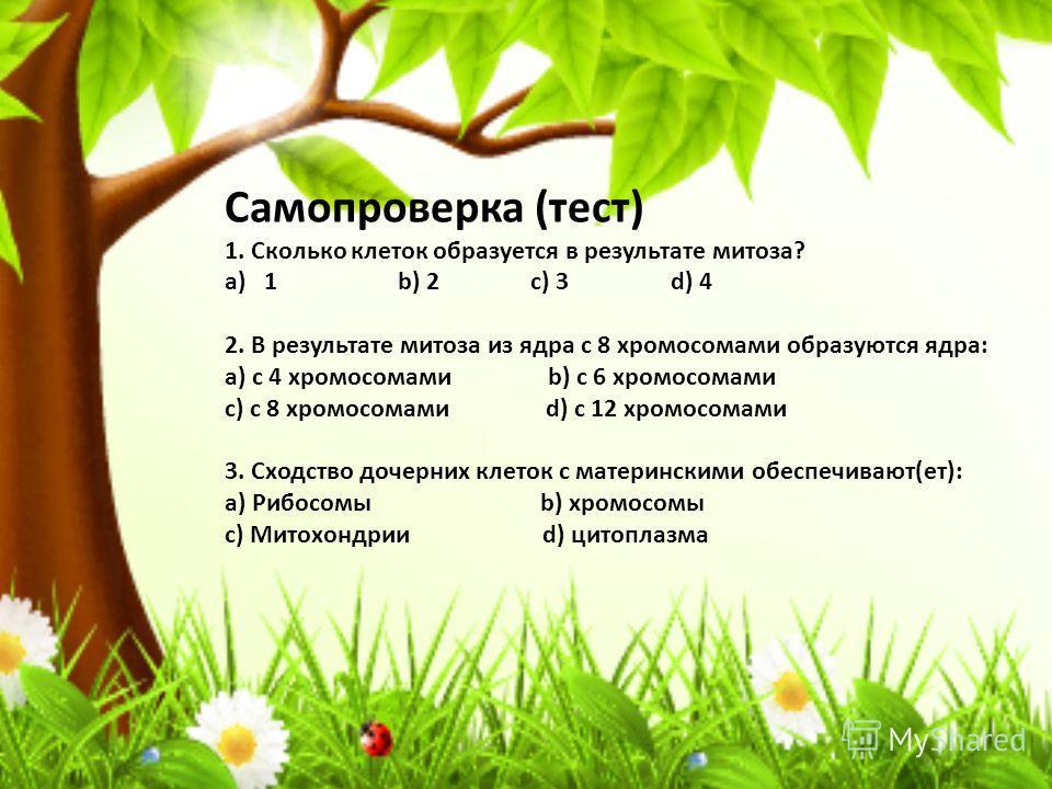Самопроверка (тест) 1. Сколько клеток образуется в результате митоза? a)1 b) 2 c) 3 d) 4 2. В результате митоза из ядра с 8 хромосомами образуются ядра: a) с 4 хромосомами b) с 6 хромосомами c) с 8 хромосомами d) с 12 хромосомами 3. Сходство дочерних