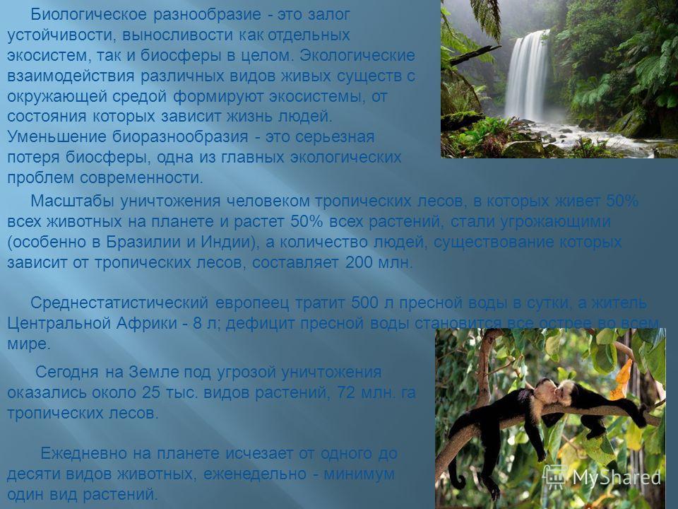 Биологическое разнообразие - это залог устойчивости, выносливости как отдельных экосистем, так и биосферы в целом. Экологические взаимодействия различных видов живых существ с окружающей средой формируют экосистемы, от состояния которых зависит жизнь