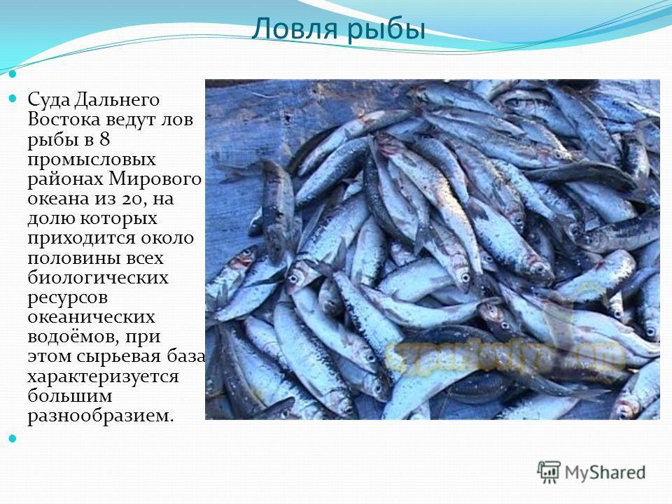 Ловля рыбы Суда Дальнего Востока ведут лов рыбы в 8 промысловых районах Мирового океана из 20, на долю которых приходится около половины всех биологических ресурсов океанических водоёмов, при этом сырьевая база характеризуется большим разнообразием.