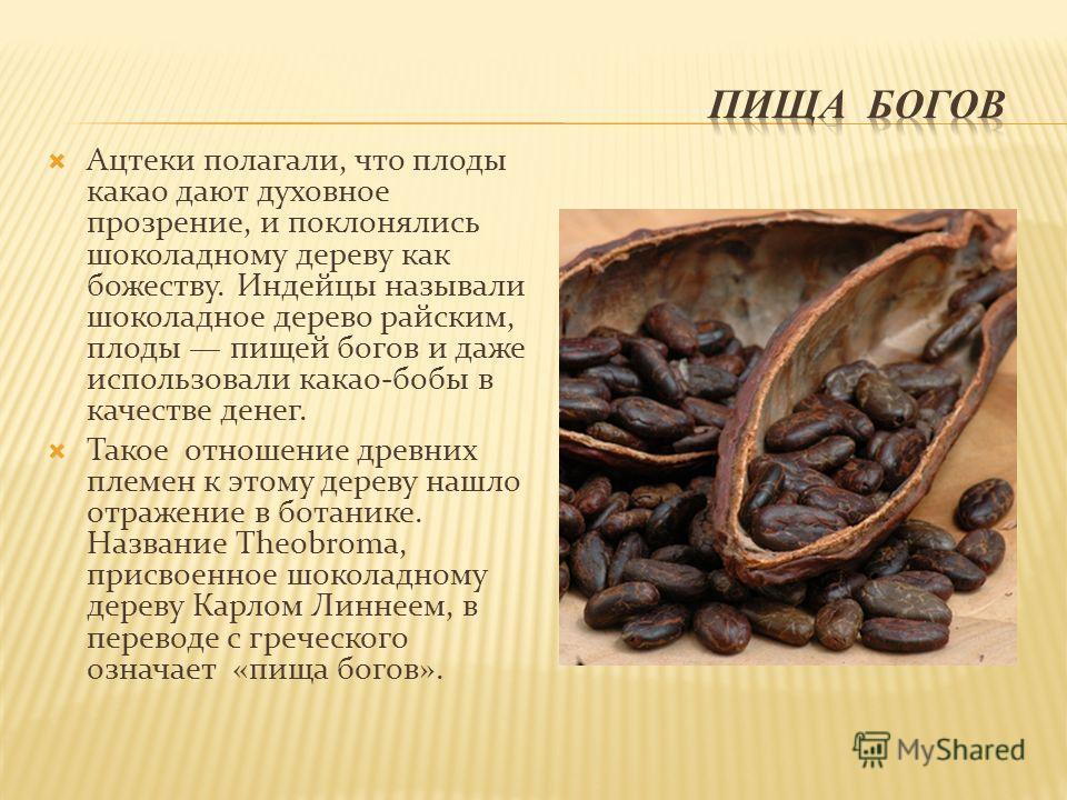 Ацтеки полагали, что плоды какао дают духовное прозрение, и поклонялись шоколадному дереву как божеству. Индейцы называли шоколадное дерево райским, плоды пищей богов и даже использовали какао-бобы в качестве денег. Такое отношение древних племен к э