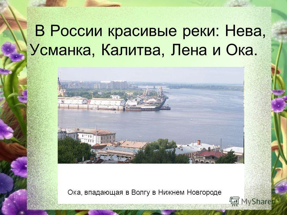В России красивые реки: Нева, Усманка, Калитва, Лена и Ока. Ока, впадающая в Волгу в Нижнем Новгороде