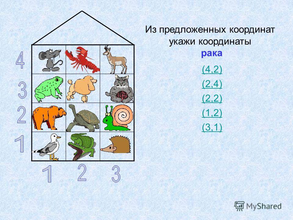 Из предложенных координат укажи координаты рака (4,2) (2,4) (2,2) (1,2) (3,1)