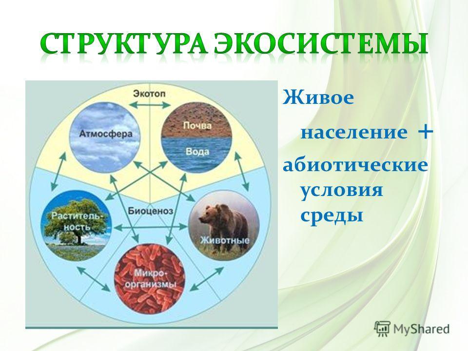 Живое население + абиотические условия среды
