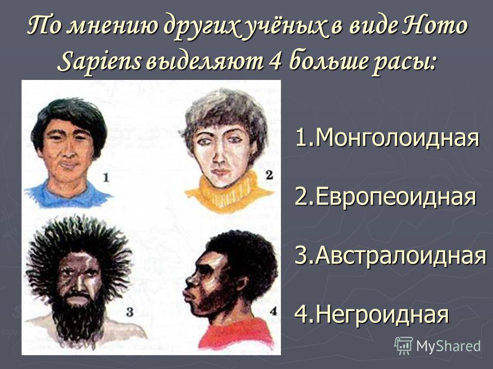 По мнению других учёных в виде Homo Sapiens выделяют 4 больше расы: 1.Монголоидная 2.Европеоидная 3.Австралоидная 4.Негроидная