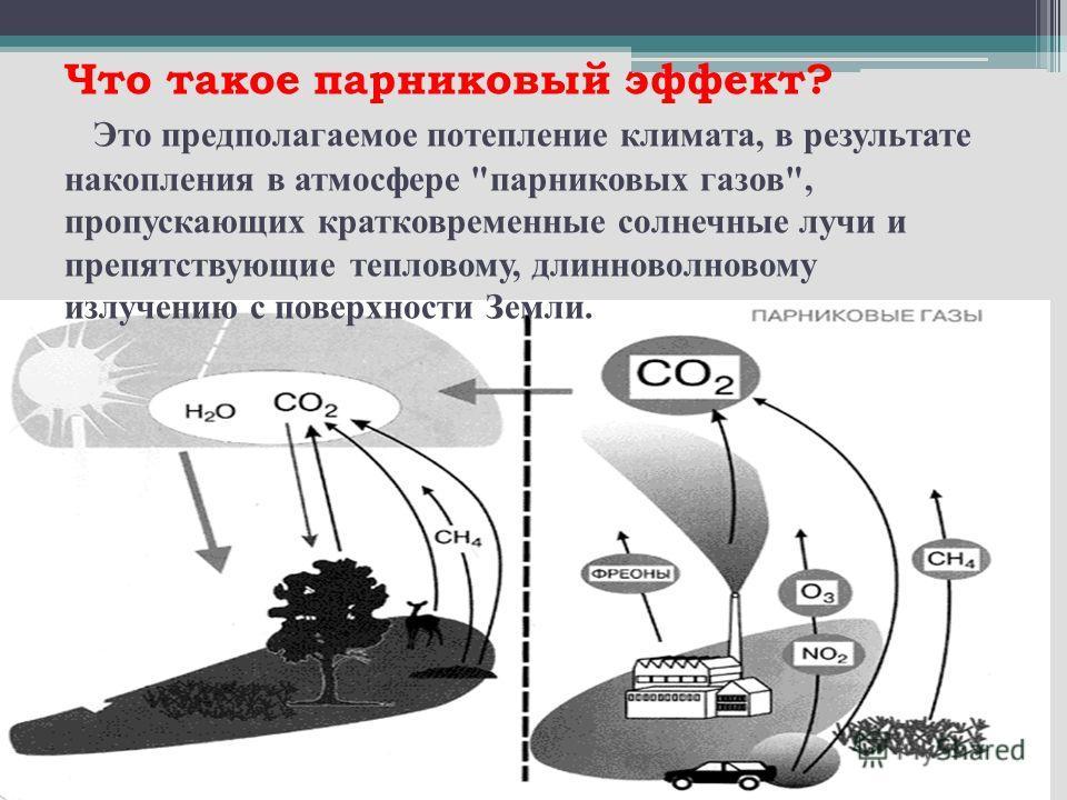 Что такое парниковый эффект? Это предполагаемое потепление климата, в результате накопления в атмосфере парниковых газов, пропускающих кратковременные солнечные лучи и препятствующие тепловому, длинноволновому излучению с поверхности Земли.