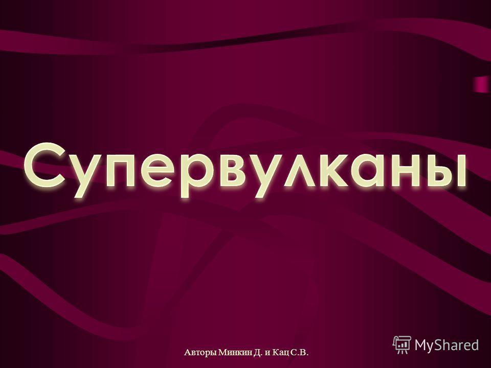 Авторы Минкин Д. и Кац С.В.