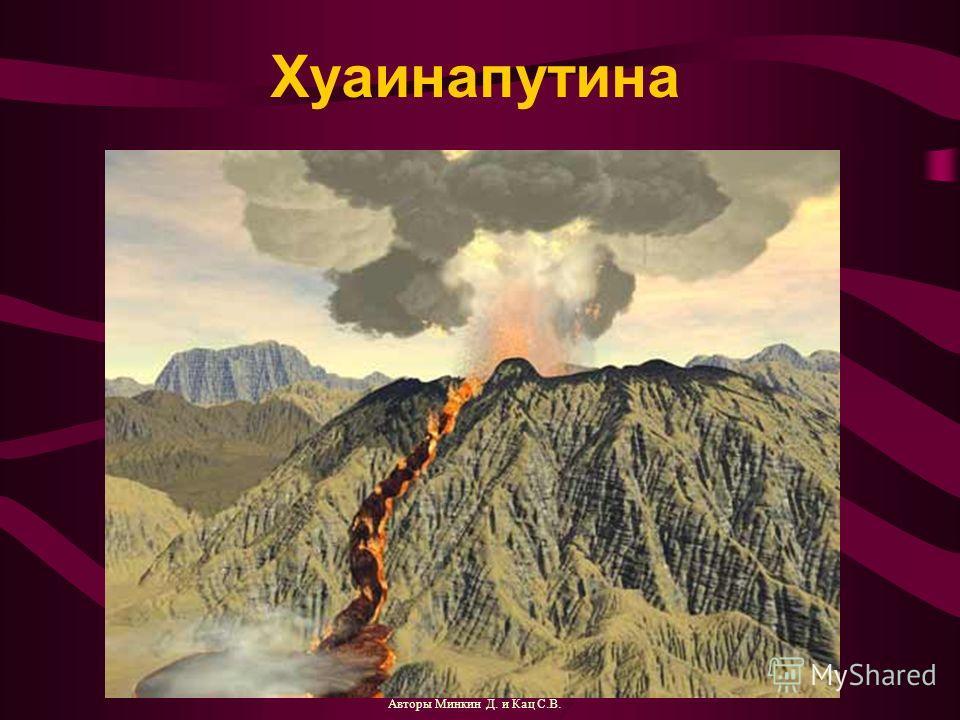 Хуаинапутина Авторы Минкин Д. и Кац С.В.