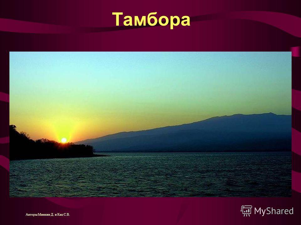 Тамбора Авторы Минкин Д. и Кац С.В.