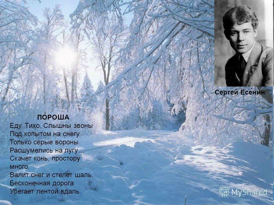 ПОРОША Еду. Тихо. Слышны звоны Под копытом на снегу. Только серые вороны Расшумелись на лугу… Скачет конь, простору много. Валит снег и стелет шаль. Бесконечная дорога Убегает лентой вдаль. Сергей Есе́нин