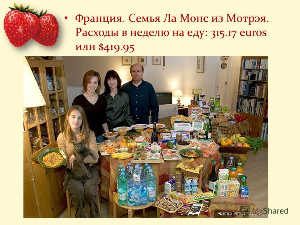 Франция. Семья Ла Монс из Мотрэя. Расходы в неделю на еду: 315.17 euros или $419.95