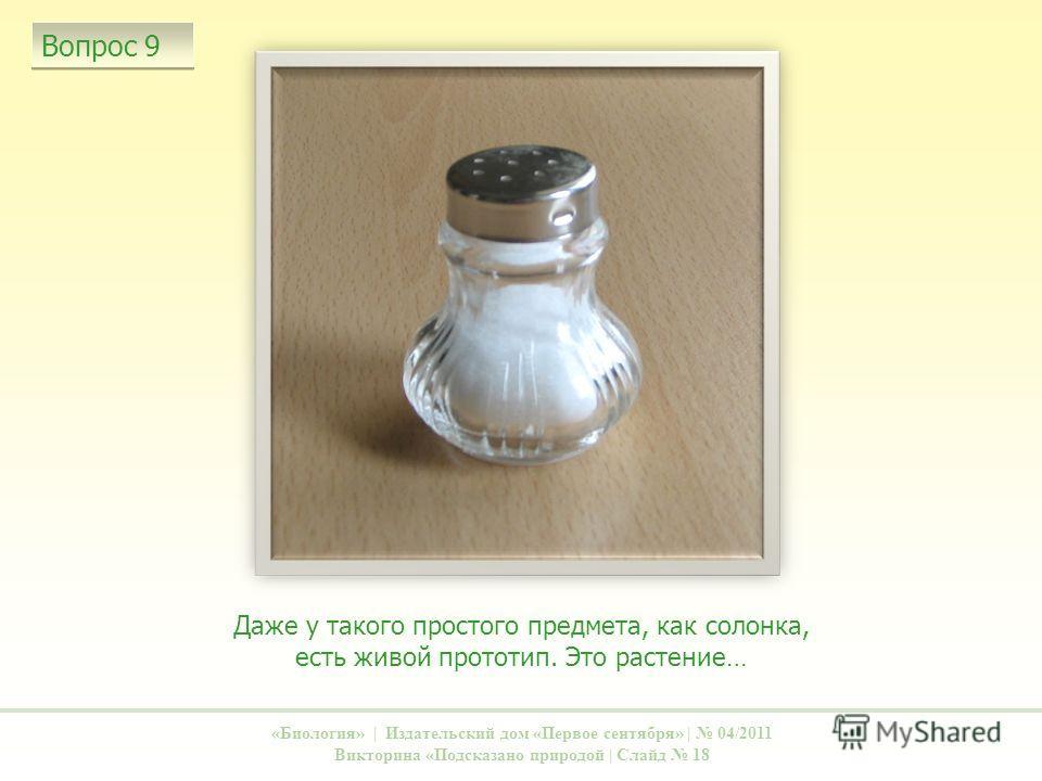 Даже у такого простого предмета, как солонка, есть живой прототип. Это растение… «Биология» | Издательский дом «Первое сентября» | 04/2011 Викторина «Подсказано природой | Слайд 18 Вопрос 9