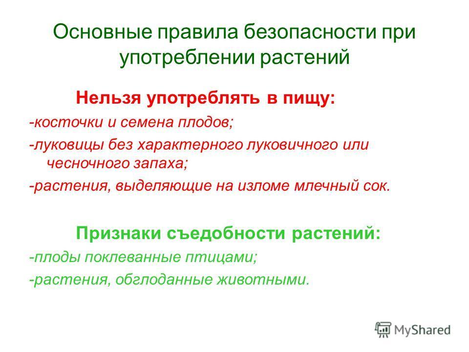 Основные правила безопасности при употреблении растений Нельзя употреблять в пищу: -косточки и семена плодов; -луковицы без характерного луковичного или чесночного запаха; -растения, выделяющие на изломе млечный сок. Признаки съедобности растений: -п