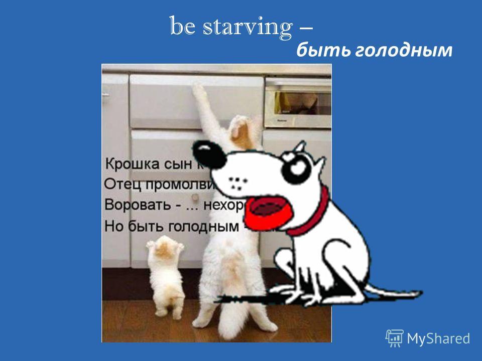 be starving – быть голодным