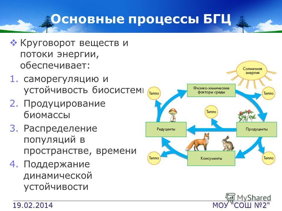 Основные процессы БГЦ Круговорот веществ и потоки энергии, обеспечивает: 1.саморегуляцию и устойчивость биосистемы 2.Продуцирование биомассы 3.Распределение популяций в пространстве, времени 4.Поддержание динамической устойчивости 19.02.2014 МОУ